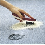 Scrub the Duo-P cleaning powder into carpet fibers with the SEBO Duo-P hand brush