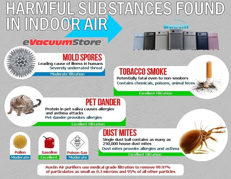Austin Air Infographic