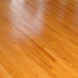 Hardwood Floor Cleaning Supplies